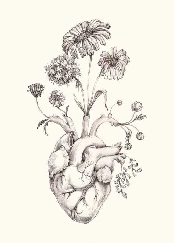 570x798 Pictures Drawing Hearts And Flowers,
