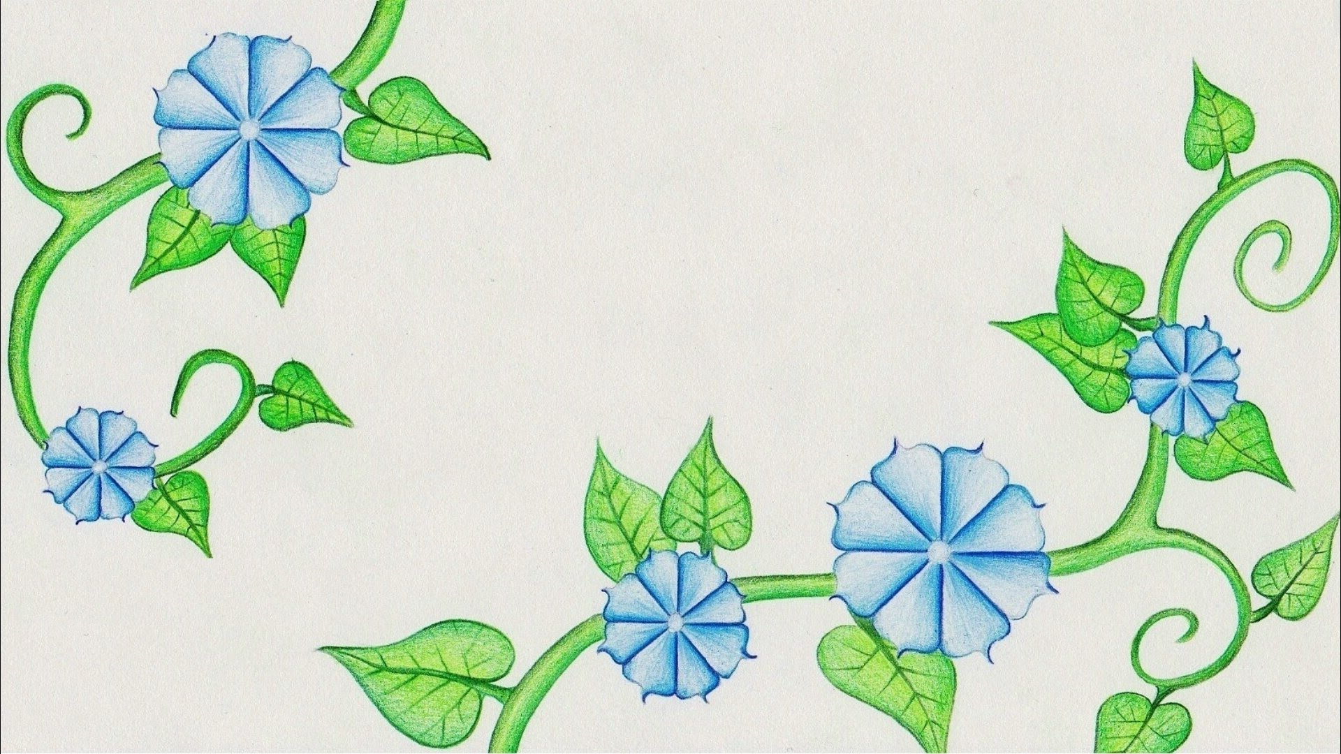 1920x1080 Easy Drawings Of Flowers And Vines Flower Drawing (Morning Glory