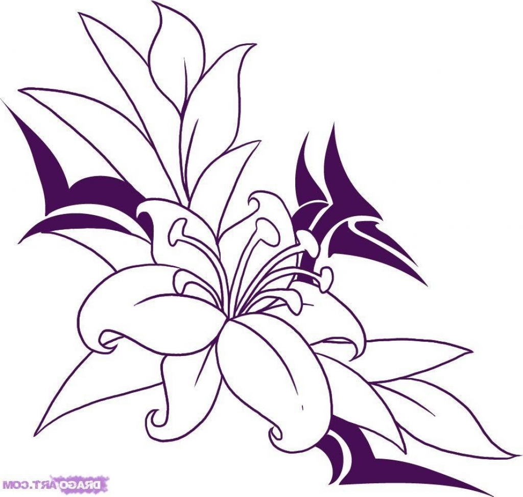 1024x973 Easy Pencil Drawings Of Flowers And Vines Tag Easy Pencil Drawings