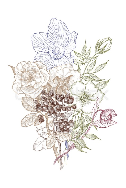 534x800 Retro High Detailed Drawing Wild Flower Bouquet. For Sticker