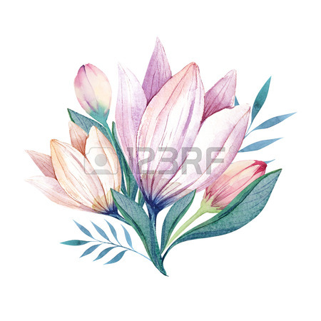 450x450 Flowers Set. Colorful Floral Bouquet With Leaves And Flowers