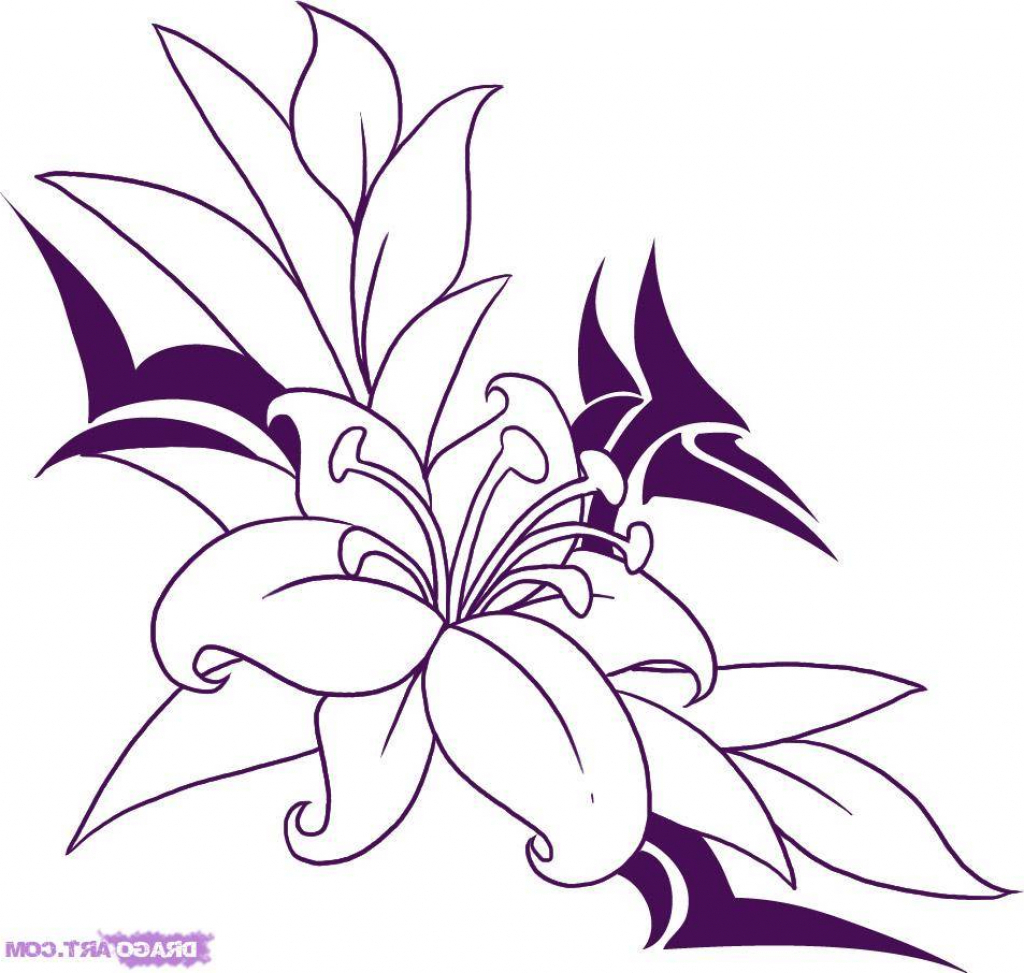 1024x973 Drawing Pictures For Flowers Easy Drawing Pictures Of Flowers