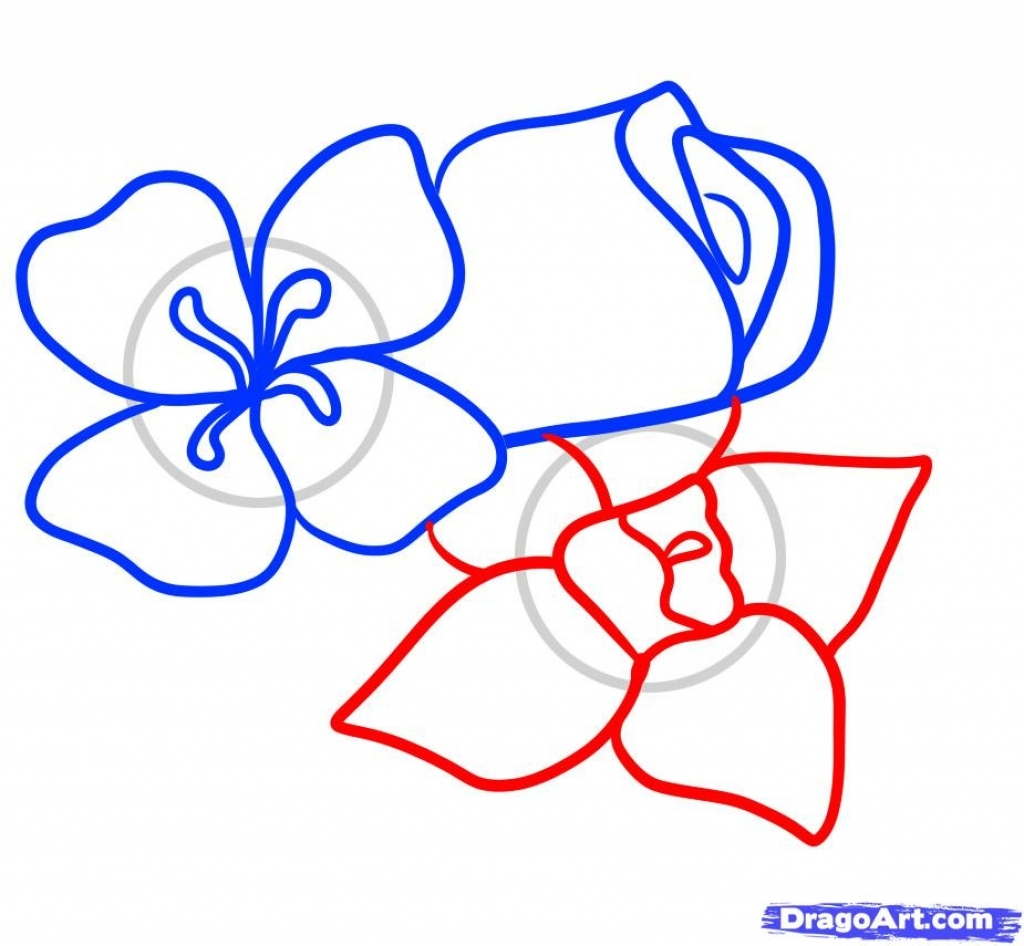 1024x946 How To Draw Different Flowers Step 4 How To Draw Easy Flowers