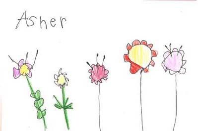 399x265 Plants Seeds Activities Lesson Plans For Pre K