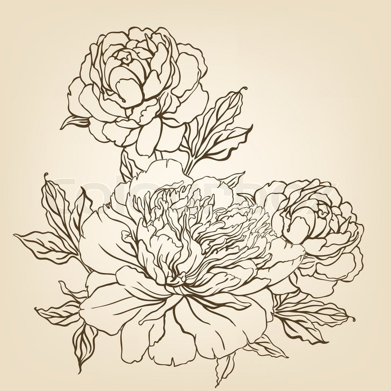 800x800 Vintage Hand Drawing Background With Flowers. Vector Illustration