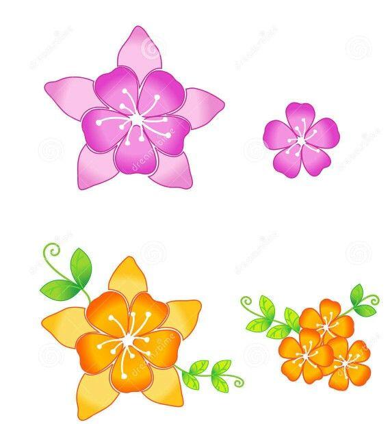 570x620 41 Best Sakura Flowers Drawing Images On Cherry
