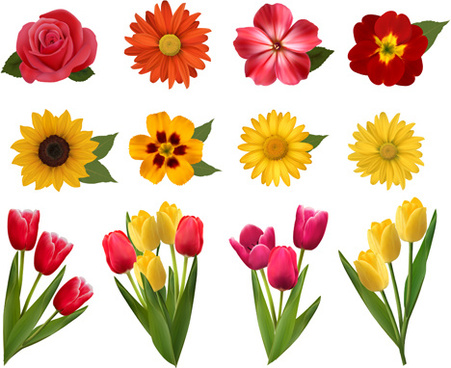 451x368 Beautiful Flowers Drawing Free Vector Download (104,978 Free