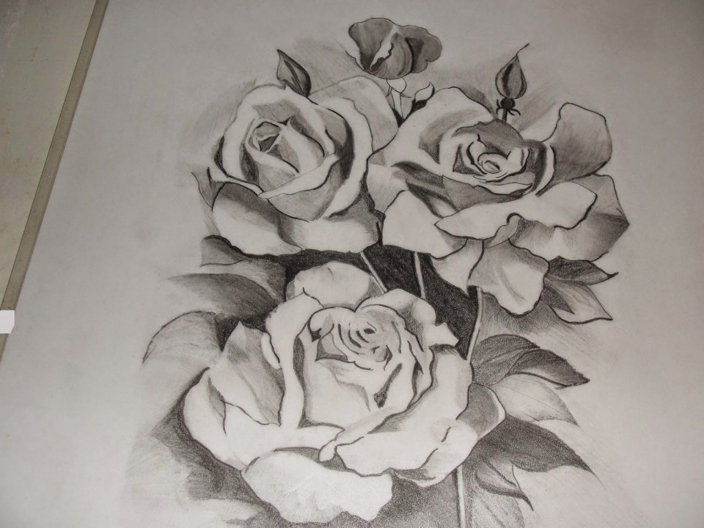 1024x768 Beautiful Pencil Sketches Of Flower