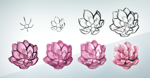 Flowers Drawing Tumblr At Getdrawings Com Free For Personal Use