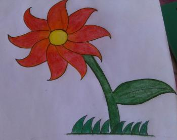 350x278 How To Draw How To Draw A Flower