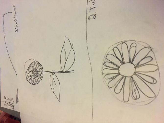 670x503 9 Easy Ways To Draw A Flower
