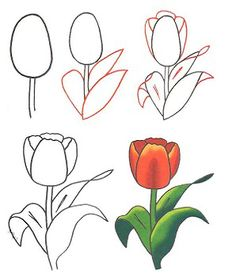 236x277 How To Draw A Tulip Step By Step. Drawing Tutorials For Kids