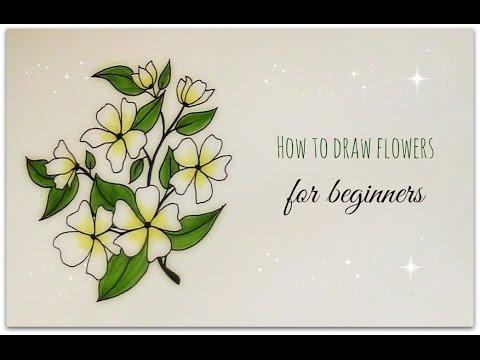 480x360 How To Draw Flowers