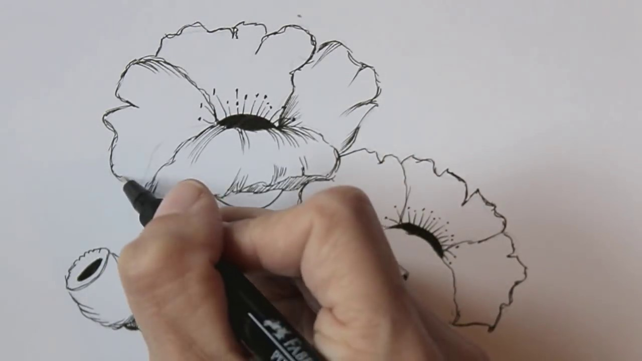 1280x720 How To Draw Flowers For Beginners Easy Version Poppy Flowers