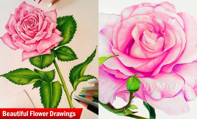 660x400 25 Beautiful And Stunning Flower Drawings From Around The World
