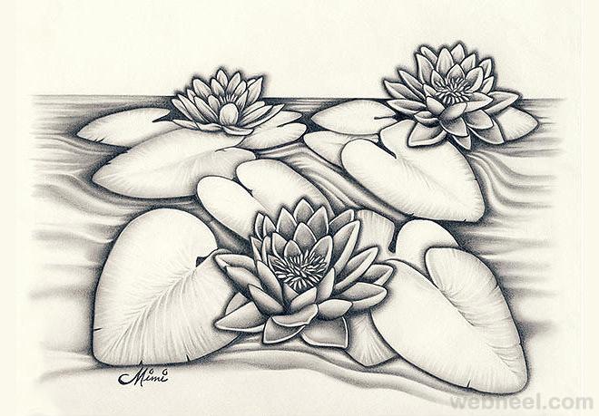 660x459 Pencil Drawings Of Flowers 8