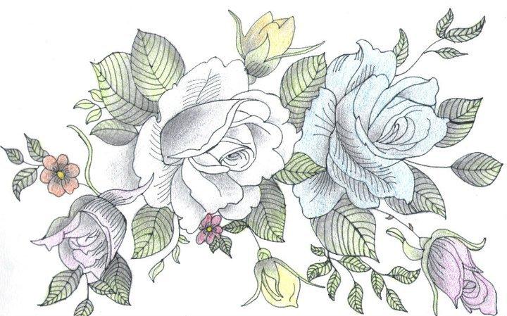 720x449 Drawn Bouquet Different Flower