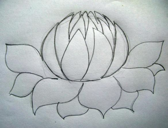 584x447 How To Draw A Flower