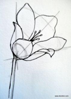 236x330 How To Draw Flowers