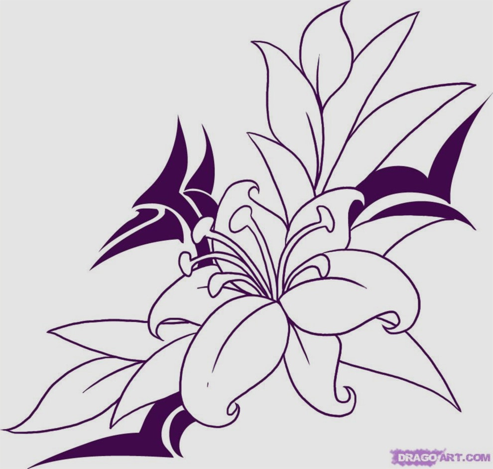 990x941 Beautiful Gallery Of Drawing Pictures Flowers Pictures Of Flower