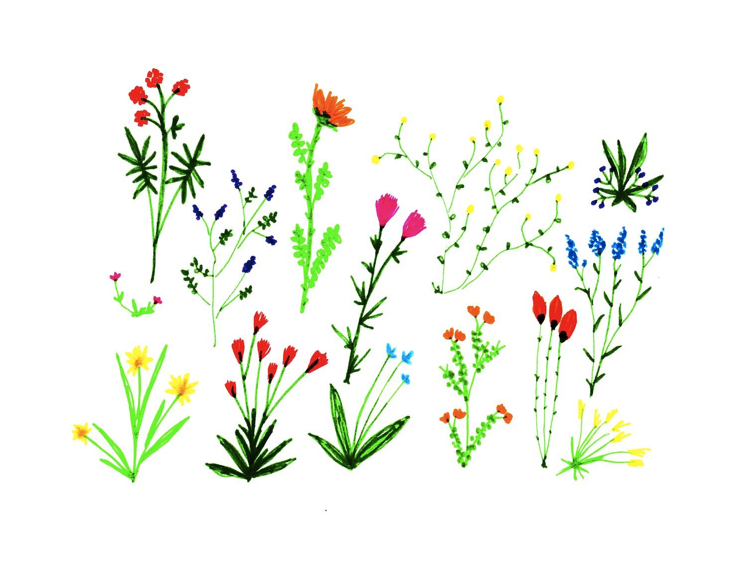 1500x1132 Drawing Small Flowers Small Flower Drawing 1000 Images About