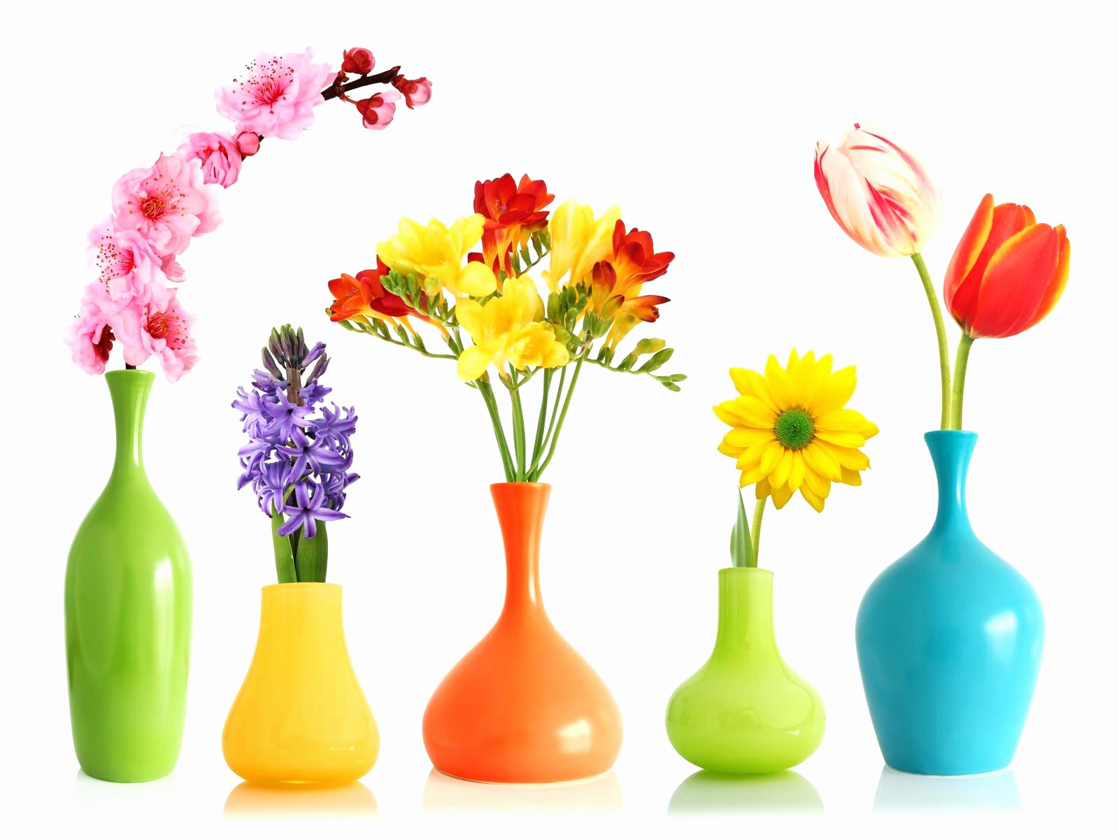 1600x1200 Flower Vase Drawing Lovely Flower Vase With Flowers Line India