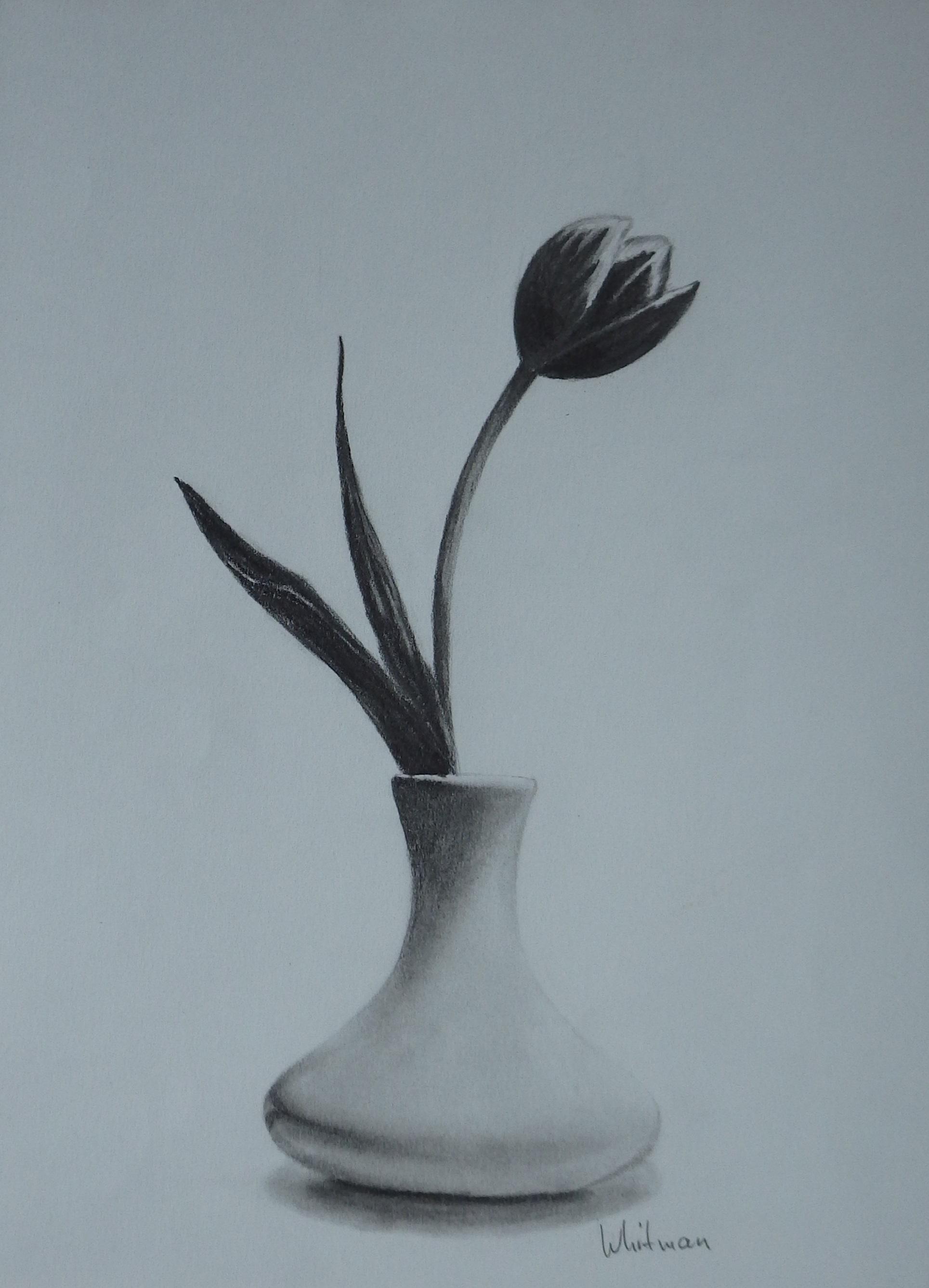 1929x2673 Still Life Drawing Flowers Drawn Still Life Flower Vase