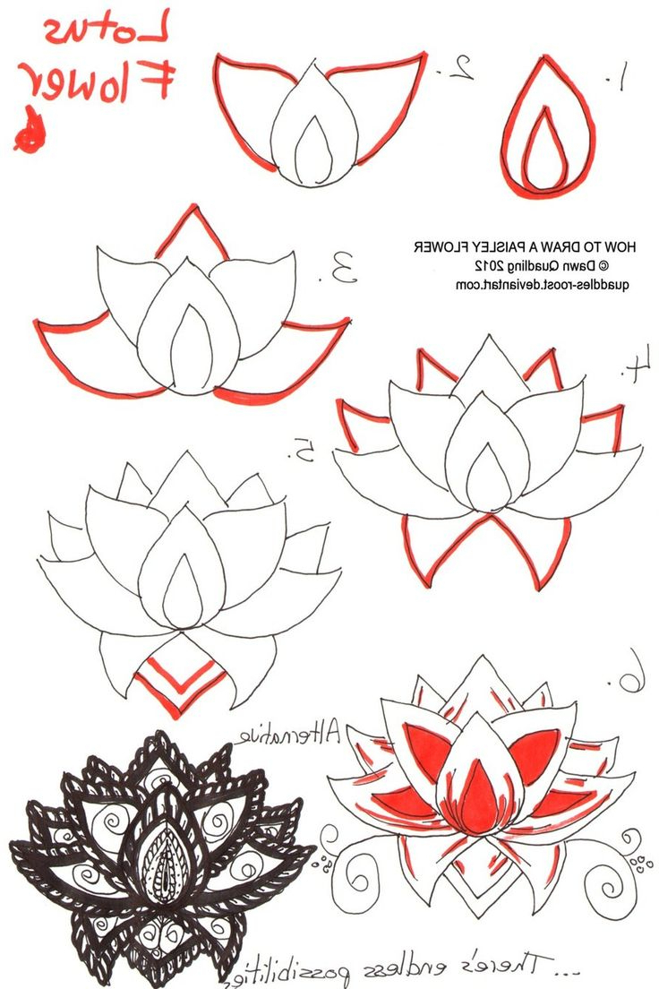 736x1104 Step By Step Drawing Flowers For Kids Flowers To Draw Step By Step
