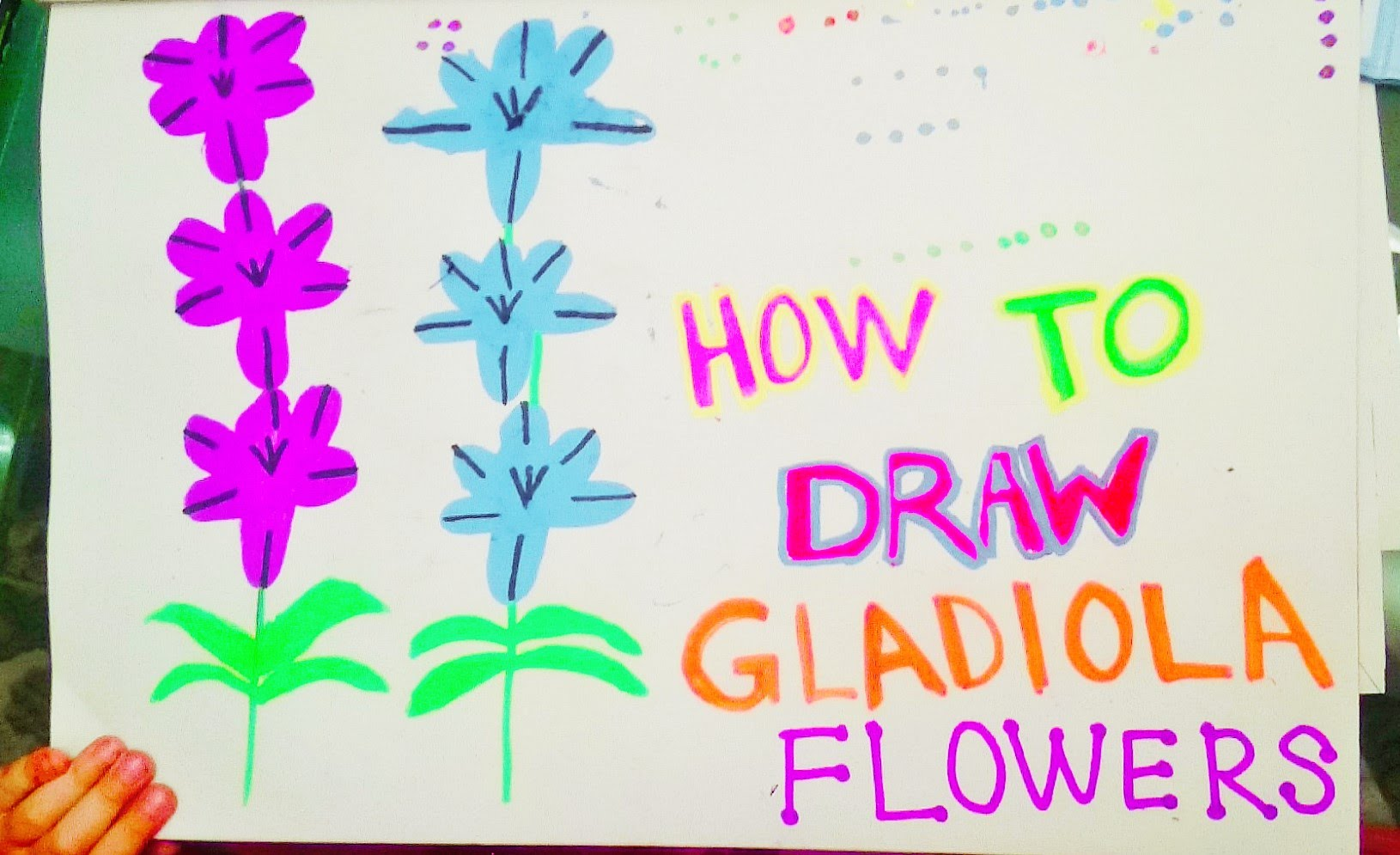 1630x995 Art Ideas For Kids How To Draw Flowers Gladiolus. Step By Step