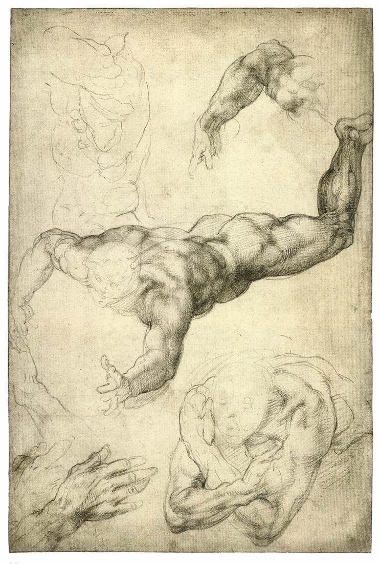 743x1100 Michelangelo Studies For A Flying Angel Black Chalk, 407 X 272 Mm