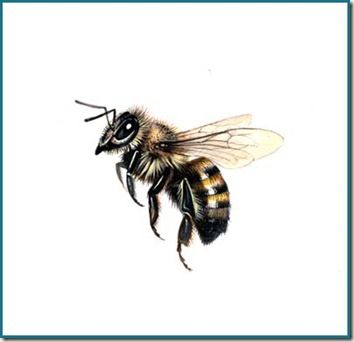 354x342 3d Realistic Flying Bee Tattoo Design Bees Bees