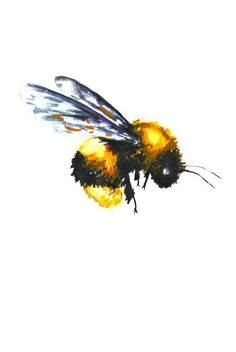 236x352 Bee Watercolor Painting