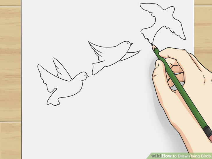 how to draw a flying bird step by step