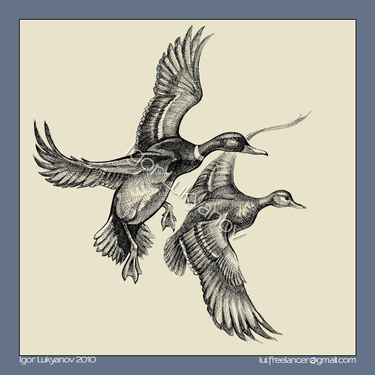 736x736 Flying Duck Tattoos