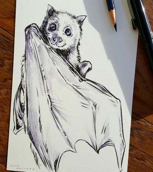 493x555 Happy Little Flying Fox. Instagram @artbykatekennedy