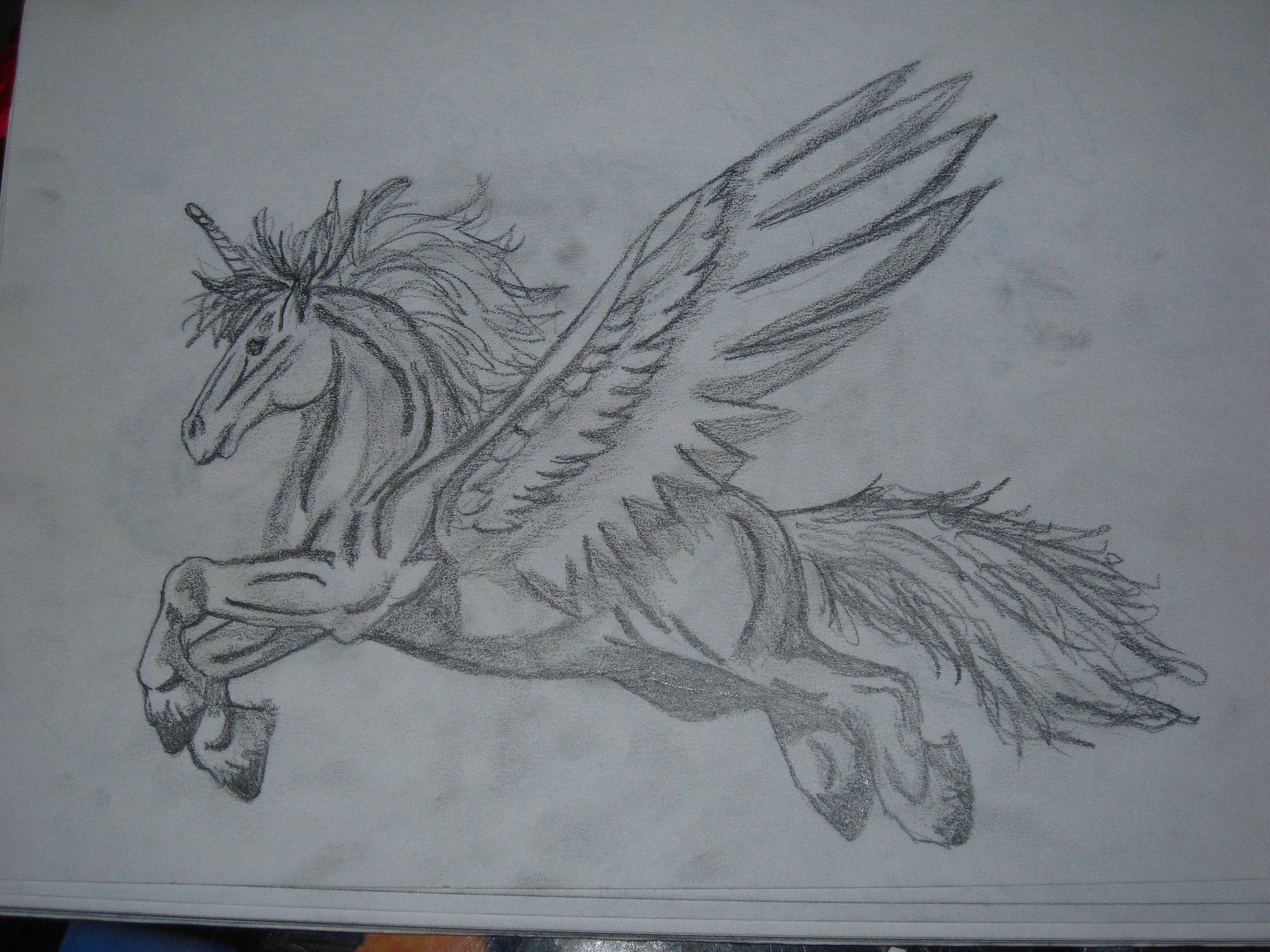 3264x2448 A Very Buff Flying Horse By Rachel5335