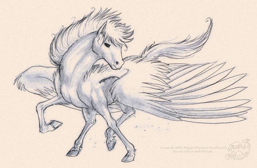 843x550 The Winged Horse Pegasus By Pandorabox