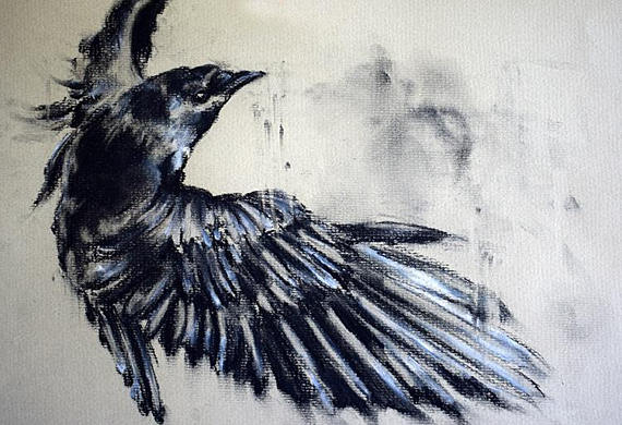 570x390 Original Charcoal Drawing Crow Flying Black And White Wall Art