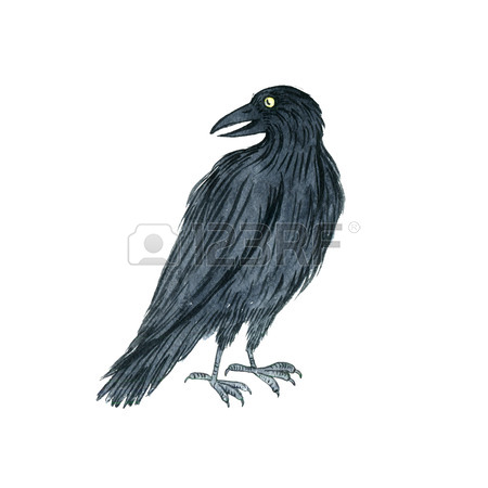 450x450 Watercolor Black Flying Raven, Drawing Bird, Hand Drawn