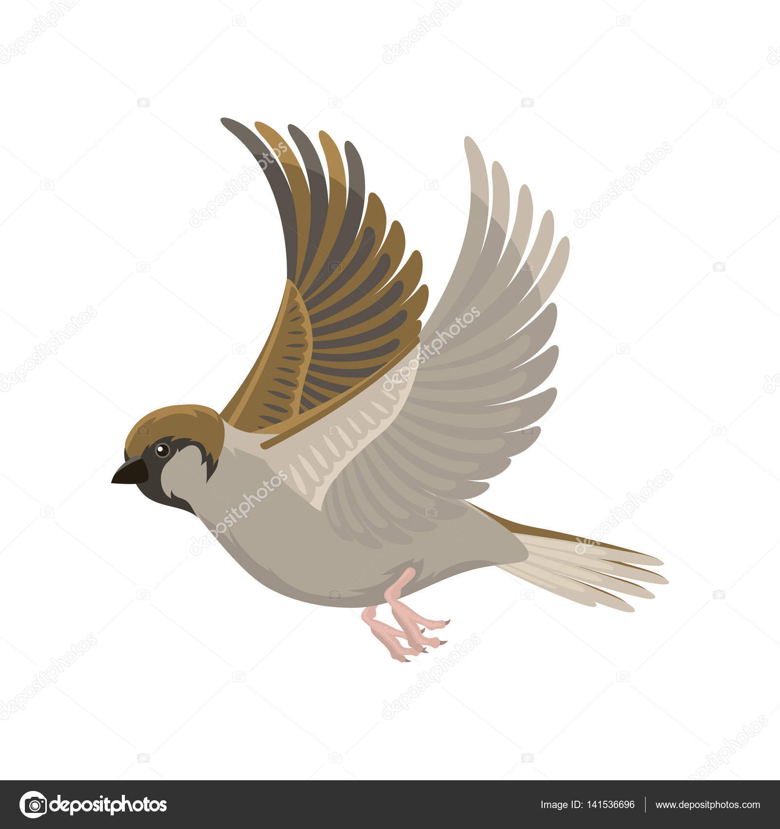 1600x1700 Sparrow Flying Bird Vector Illustration Stock Vector