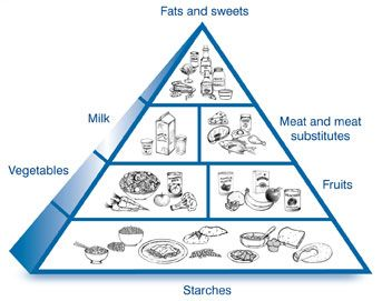 343x271 A Drawing Of The Diabetes Food Pyramid, Divided Into Six Sections