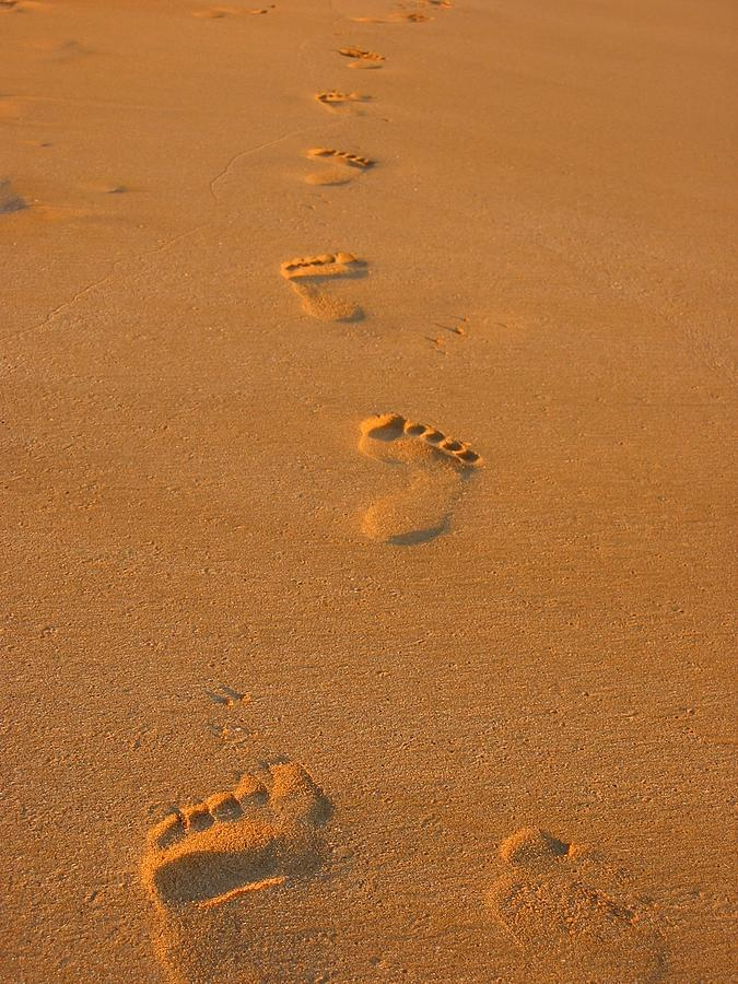 675x900 Footprints In The Sand Photograph By Andreas Thust