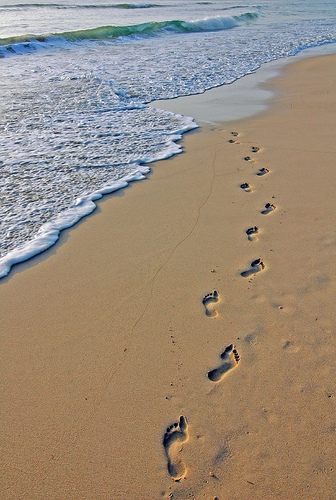 336x500 Pin By Lori Townsend On Photography Footprints