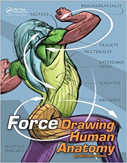 260x335 Force Drawing Human Anatomy Force Drawing Series Amazon.co.uk