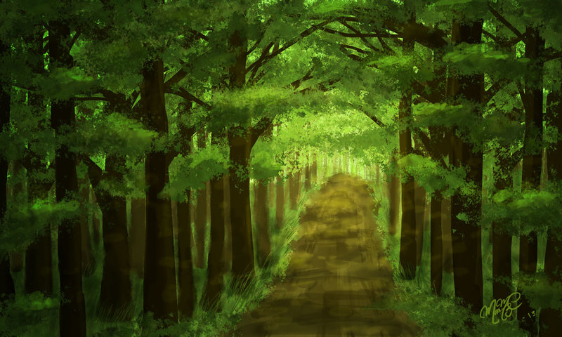 800x480 Forest Background By Mariamc