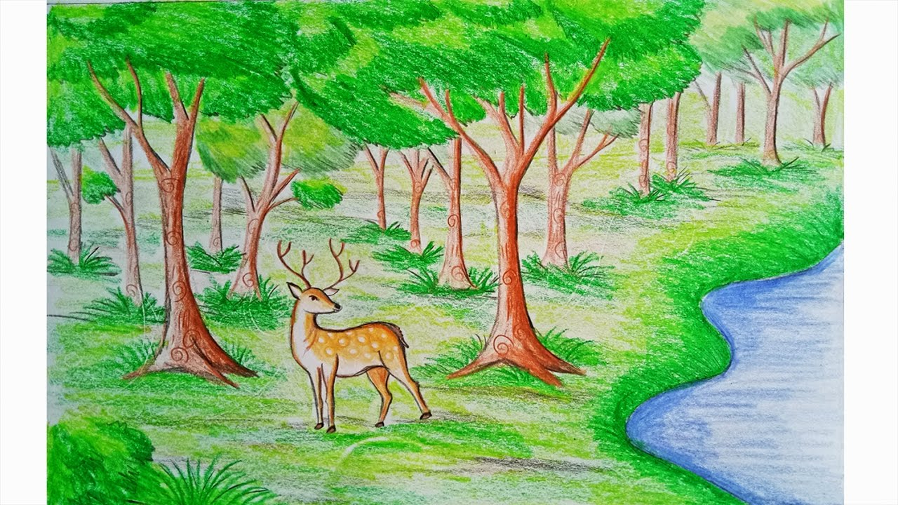 forest drawing for kids at getdrawingscom free for