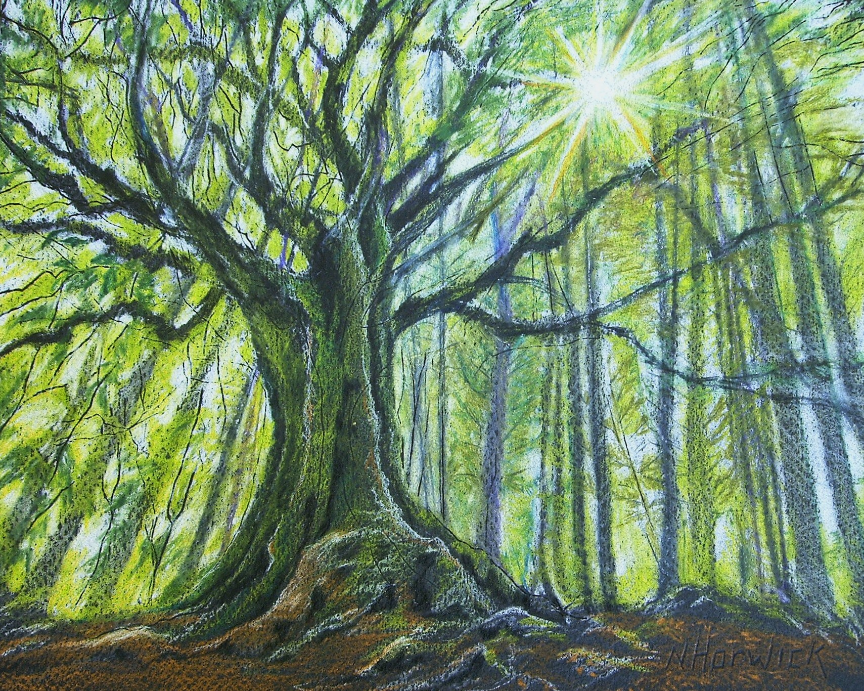 Forest Pencil Drawing at GetDrawings.com | Free for personal use ...