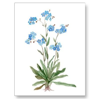 400x400 Flower, Forget Me Not, Watercolor Painting Tattoos I Want