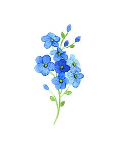 236x283 How To Draw A Forget Me Not Flower Forget Me Not Flower's By