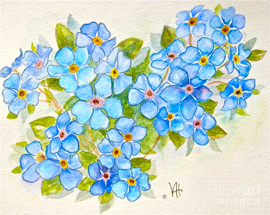 900x718 Alpine Forget Me Not Painting By Virginia Ann Hemingson